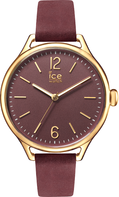 Ice-Watch - Lider Biznesu 2017