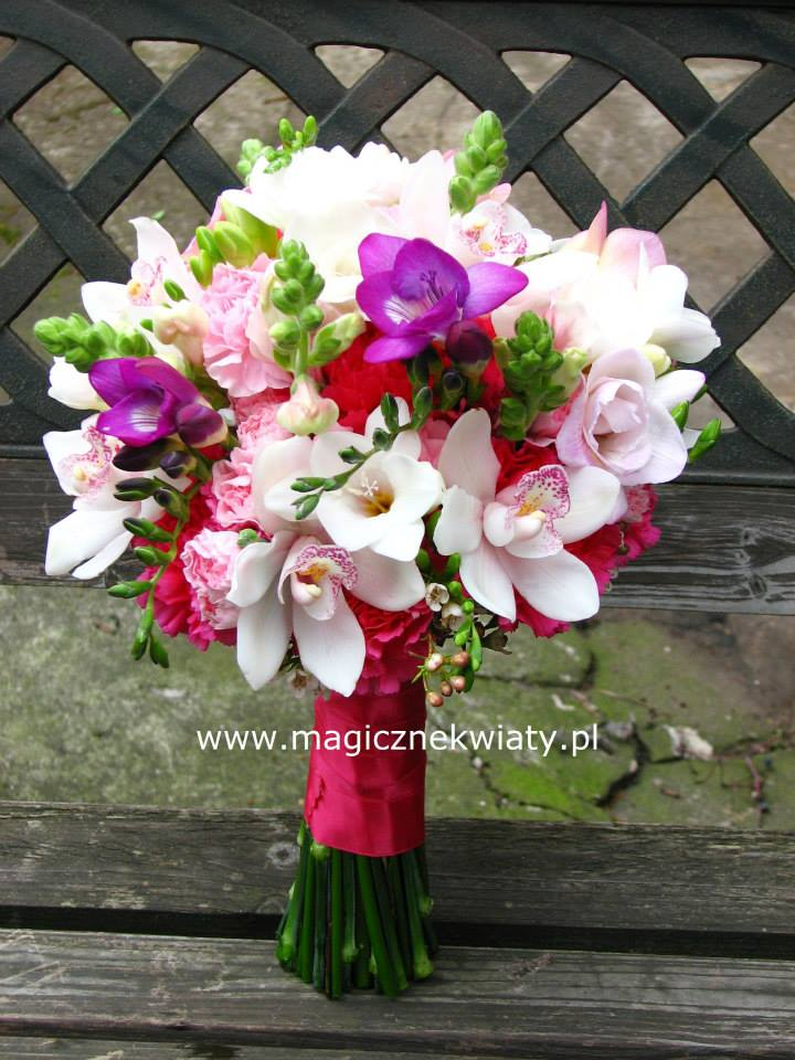 Magiczne Kwiaty Iwona Fudała