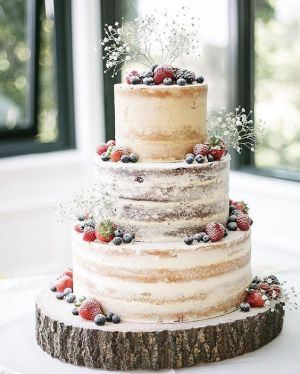 Naked Wedding Cake (30)