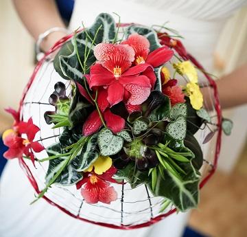 Passja-Flora przez Anne