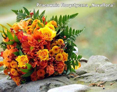 jesienny novaflora