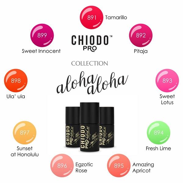 Szeroka oferta ChiodoPRO, skierowana zarówno do klientek indywidualnych, jak i salonów kosmetycznych, obejmuje profesjonalne lakiery hybrydowe, żele do stylizacji paznokci, ozdoby, akcesoria oraz urządzenia lampy UV/LED.