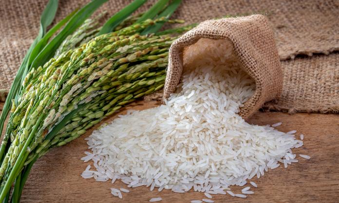 Jaki ryż wybrać