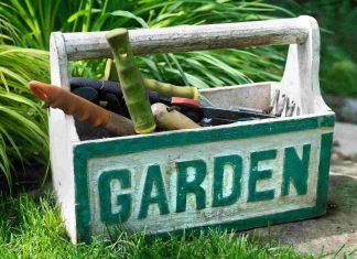 Jeśli urządzisz ogród w taki sposób! Wszyscy będą Ci zazdrościć