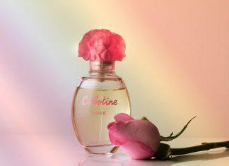 Perfumy od gwiazd